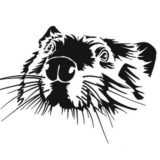 cropped-Stowarzyszenie-nasz-bóbr-logo.jpg